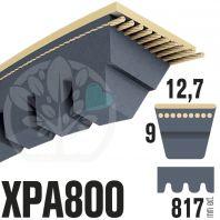 Courroie Trapézoïdale Crantée XPA800. 12,7mm x 817mm ext.
