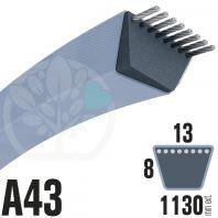 Courroie Trapézoïdale A43 Néoprène. 13mm x 1130mm