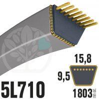 Courroie Trapézoïdale 5L710 Renforcée Kevlar. 15.8mm x 1803mm