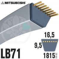 Courroie Mitsuboshi LB71 Renforcée.  16.5mm x 1815mm