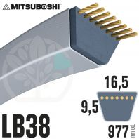 Courroie Mitsuboshi LB38 Renforcée.  16.5mm x 977mm