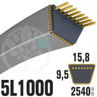 Courroie Trapézoïdale 5L1000 Renforcée Kevlar. 15.8mm x 2540mm