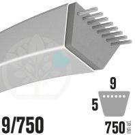 Courroie Trapézoïdale 9/750. 9mm x 750mm