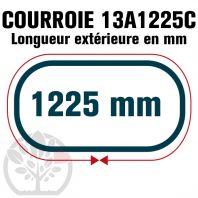 Courroie Trapézoïdale Crantée 13A1225C. 12.5mm x 1225mm
