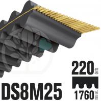Courroie Double Denture 1760-DS8M25 (220dents) 1760mmx25mm