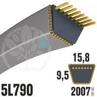 Courroie Trapézoïdale 5L790 Renforcée Kevlar. 15.8mm x 2007mm