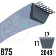 Courroie TrapézoÏdale B75 Néoprène. 17mm x 2049mm