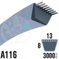 Courroie Trapézoïdale A116 Néoprène. 13mm x 3000mm