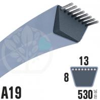 Courroie Trapézoïdale A19 Néoprène. 13mm x 530mm