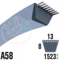 Courroie Trapézoïdale A58 Néoprène. 13mm x 1523mm