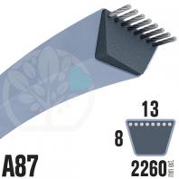 Courroie Trapézoïdale A87 Néoprène. 13mm x 2260mm