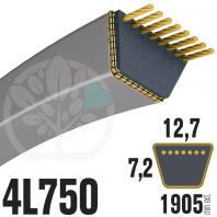 Courroie Trapézoïdale 4L750 Renforcée Kevlar. 12.7mm x 1905mm