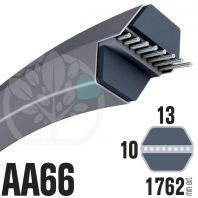 Courroie Héxagonale AA66 (6 côtés) 13mm x 1762mm